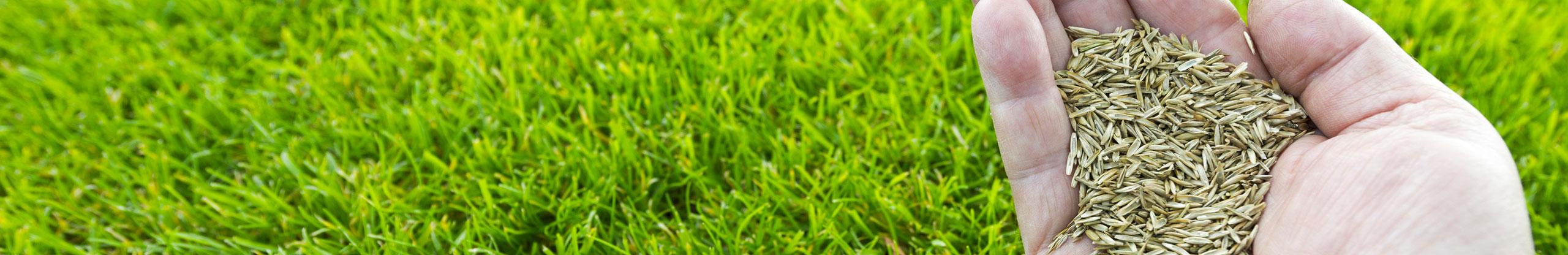 Remy jardin entreprise jardinage paysagiste jardinier for Horticulteur paysagiste